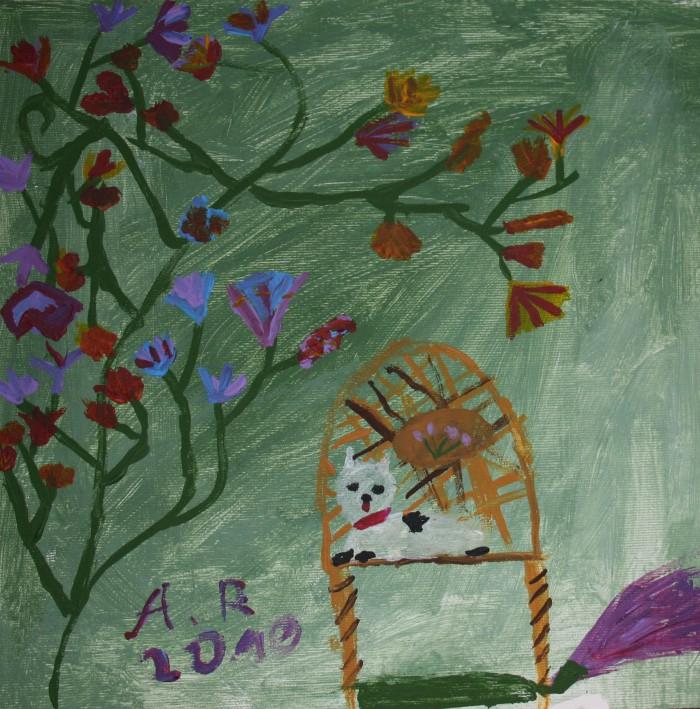 Pisica_pe_scaun.jpg
